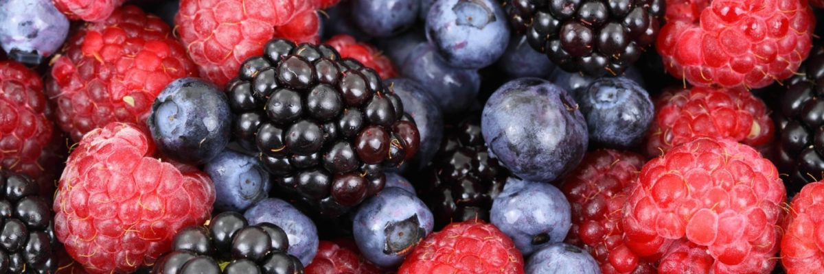 Do You Want to Increase Your Immunity to Overexposure to EMFs? Here's What You Should Eat