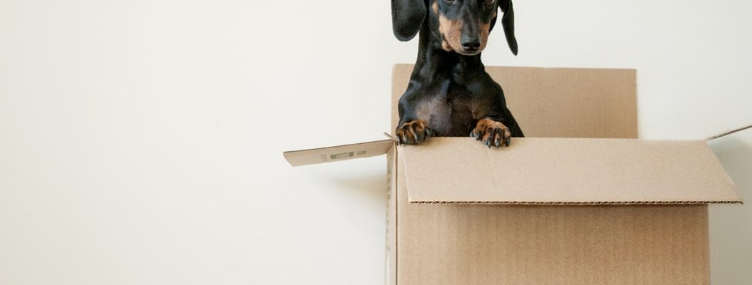 Tell-tale Signs it's Time to Move to a Bigger Home