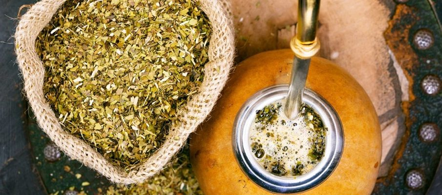 The yerba mate tea: How it can be beneficial to your health