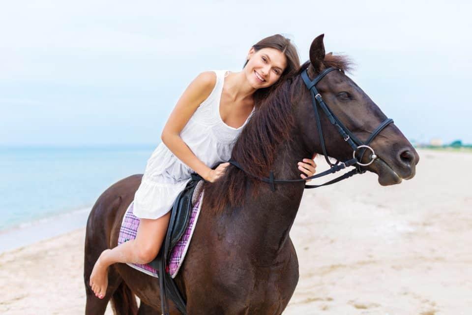 cbd4horses-e1516260409902.jpg
